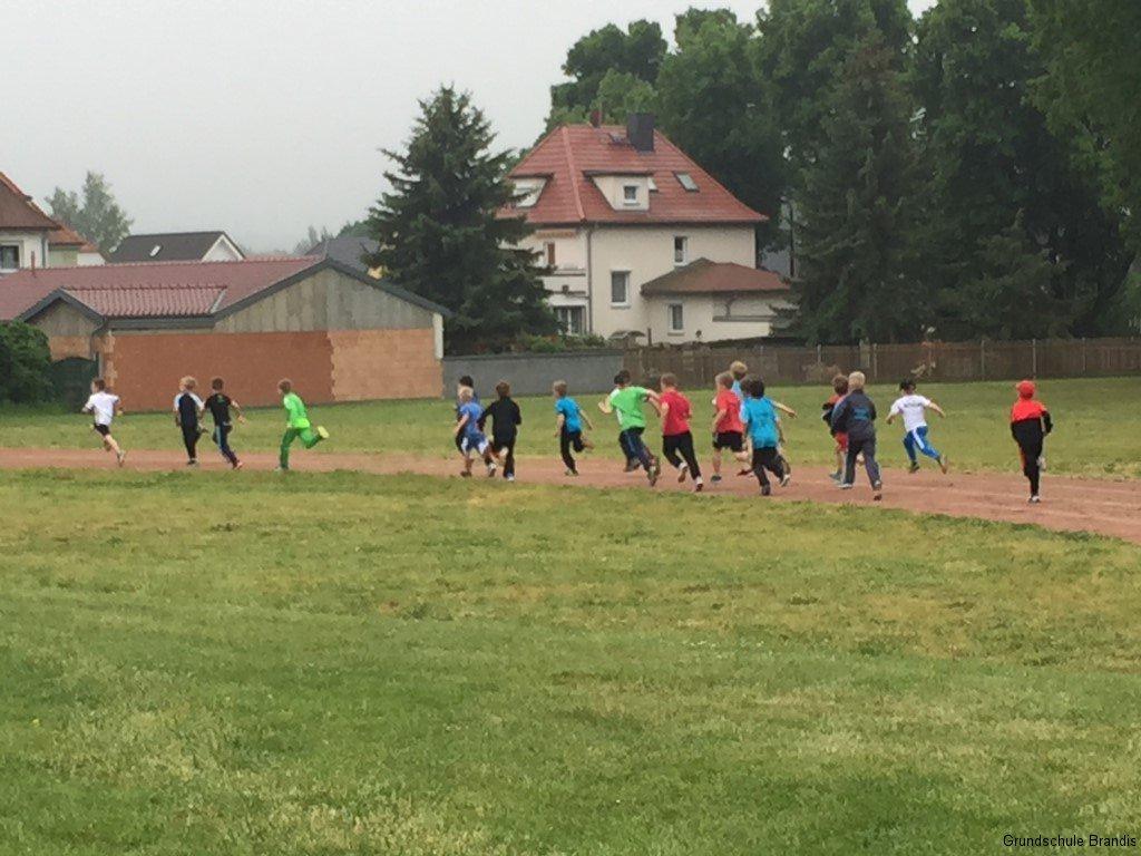 Sportfest_Crosslauf (3)
