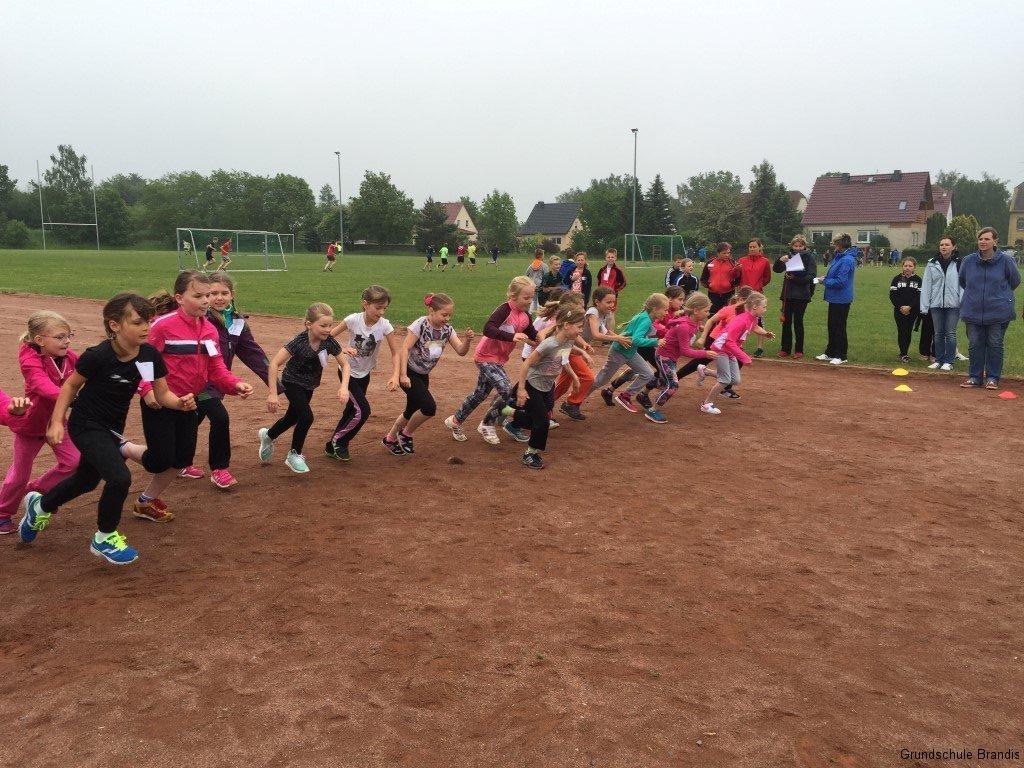 Sportfest_Crosslauf (5)