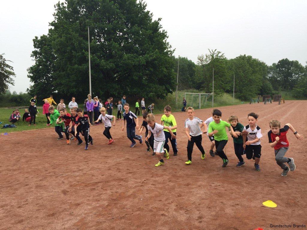 Sportfest_Crosslauf (7)