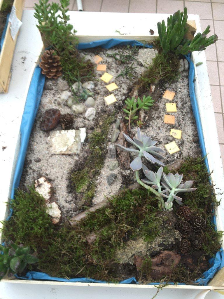 Unsere kleinen Gärten (4)