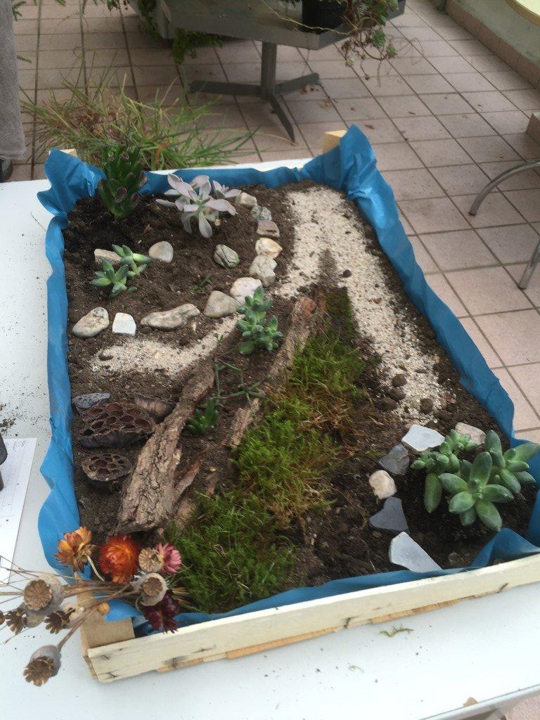 Unsere kleinen Gärten (7)